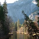 Yosemite river by Amii5