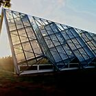 The Greenhouse Effect by Craig Mitchell