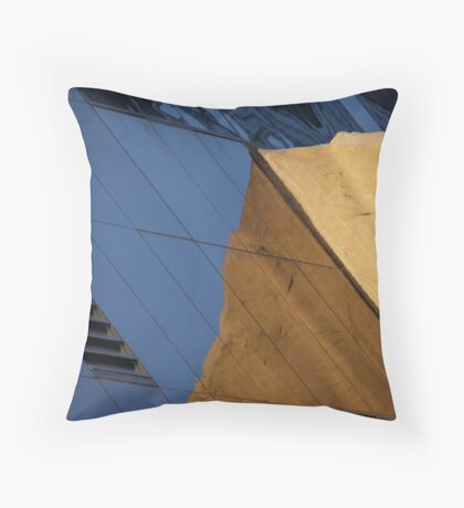 Stone in Glass Throw Pillow