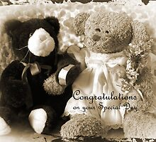 Bear-n-Plush's Special Day by L J Fraser