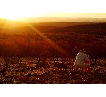 Bushveld Sunset Photographic Print
