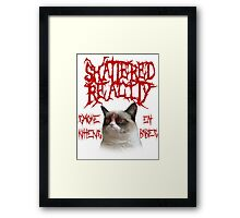 Shattered Reality Cat Framed Print