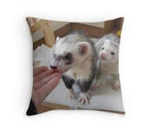 ferrets waiting to be fed.... Throw Pillow