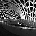 Webb Bridge by wolfcat
