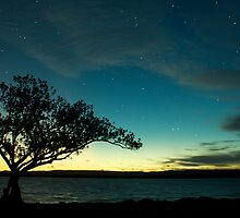 Starry Night, Lake Macquarie, Australia by Karl Lindsay