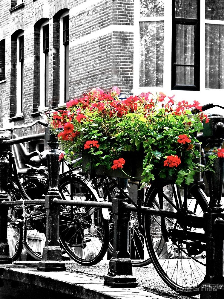 Amsterdam:  by Lydia Griffiths