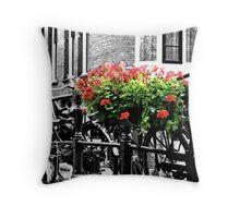 Amsterdam:  Throw Pillow