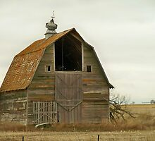 Tilted Weather Vein BARN by Diane Trummer Sullivan