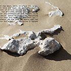 When the wind blows the sand by irwanla
