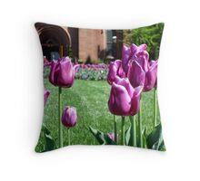 Garden View    ^ Throw Pillow