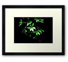 Green Star Framed Print