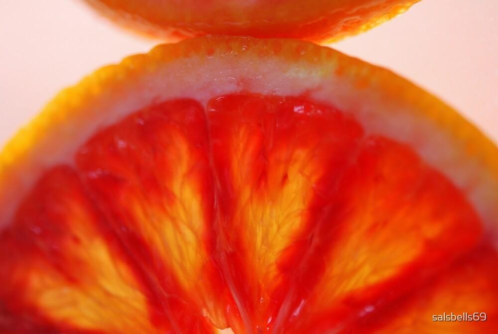 Blood Orange Sunrise by salsbells69