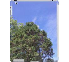 white cap iPad Case/Skin