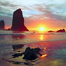 Sunset, Cannon Beach Oregon 1, USA by Forrest  Ray