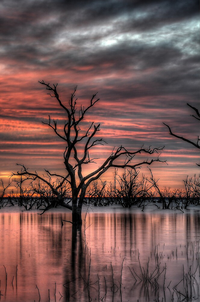 A New Day Begins by Rod Wilkinson