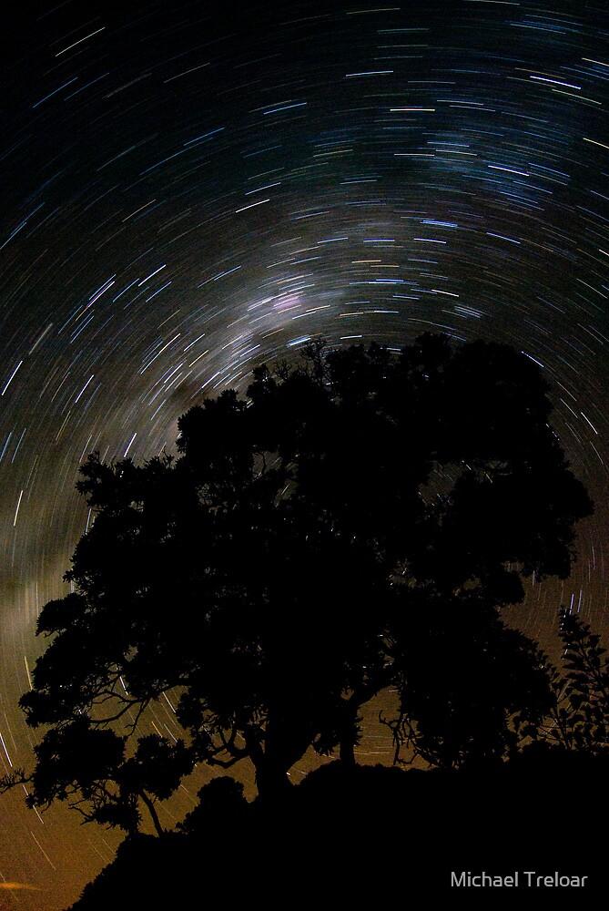 Spinning Tree by Michael Treloar
