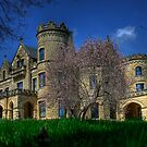 Spring at Joslyn Castle  by Tim Wright