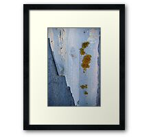 Growth and decay Framed Print
