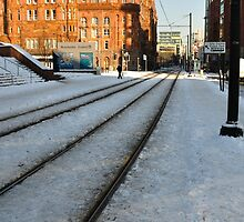 Tracks in the snow by Andrew Cryer