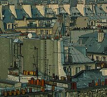 Paris Rooftops by DExPIX
