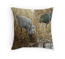 Tri-Color Heron 2 Throw Pillow
