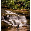 Katoomba Falls 1 by Lorraine Creagh