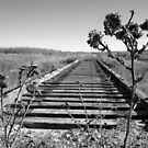 Old railroad tracks in wild west by BritGalUSA