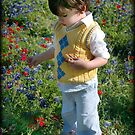 Texas Wildflowers.... by Jenni Atkins-Stair