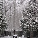 Early April Snow Storm by Christopher Clark