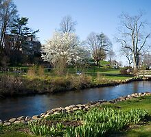 Glorious New England Spring Day by Monica M. Scanlan