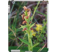 Red Beak Orchid (Pterostylis sanguinea) iPad Case/Skin