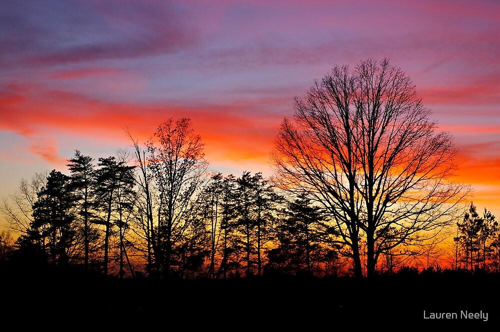 Sunset Silhouette by Lauren Neely
