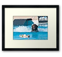 Black Lab Fetching Framed Print