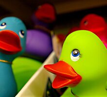 Rainbow Ducks by Lauren Neely