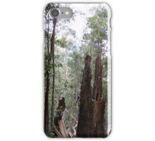 Rainforest iPhone Case/Skin