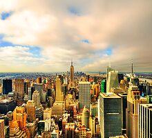 Manhattan  by Svetlana Sewell