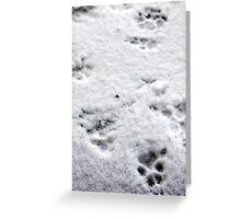 Winter Pawprints Greeting Card