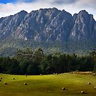 Mt Roland 2 - Sheffield Tasmania by Hans Kawitzki