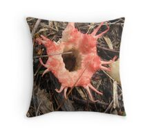 Red Starfish Fungi, stinking fly attracting, amazing, red, Throw Pillow