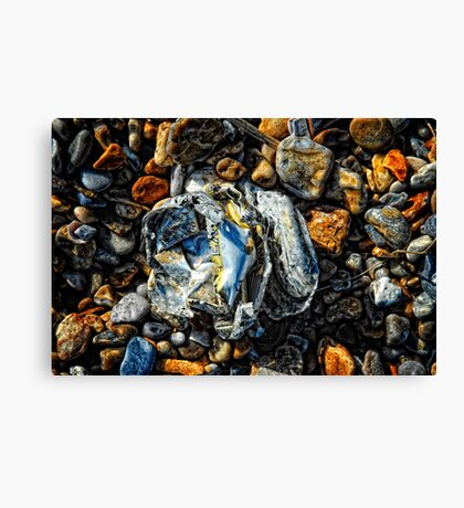 Crumpled Can Canvas Print