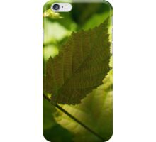 Hazel Leaves - New Life in the Springtime Forest iPhone Case/Skin