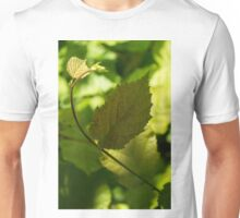 Hazel Leaves - New Life in the Springtime Forest Unisex T-Shirt