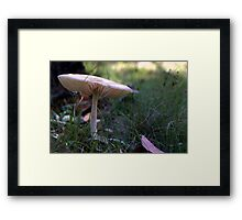 Alone- Hill End Framed Print