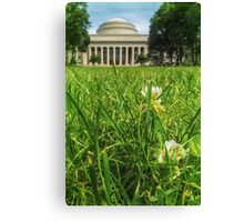 MIT Weeds of Wisdom Canvas Print