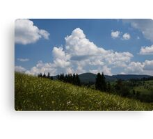 Lush Wildflower Meadow in the Mountains Canvas Print