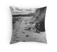 Ragged Beach Throw Pillow