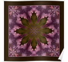 Flower of the Dragonfly Shawl Poster