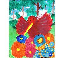 Happy Flowers and Hummingbird Photographic Print