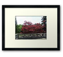 Red Crown Framed Print