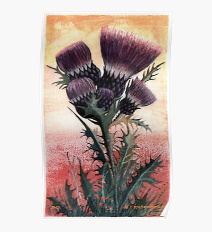 the flower of scotland Poster